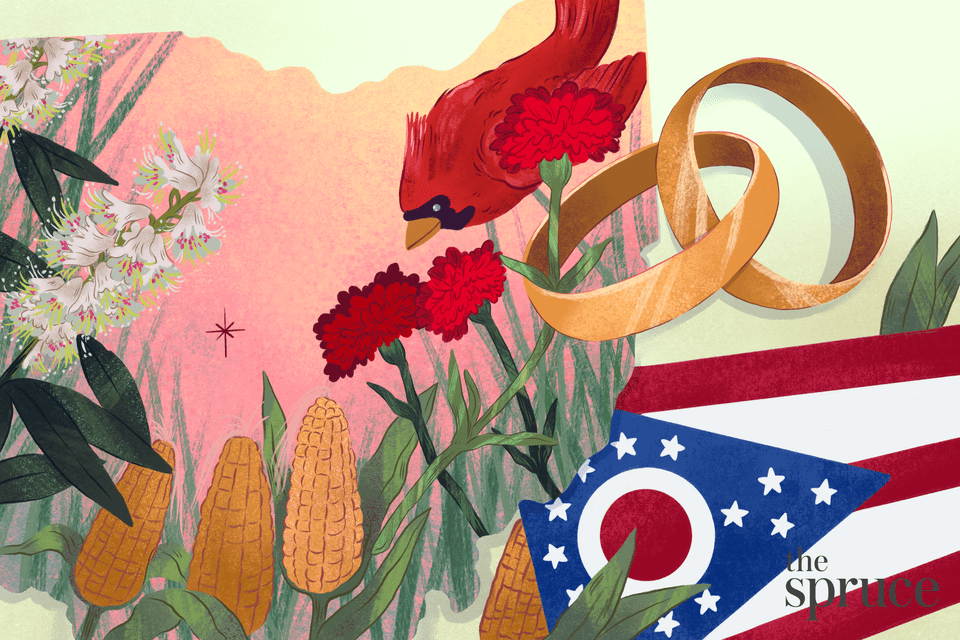 Illustration of the state outline of ohio, the state bird, flower and flag and pair of wedding rings