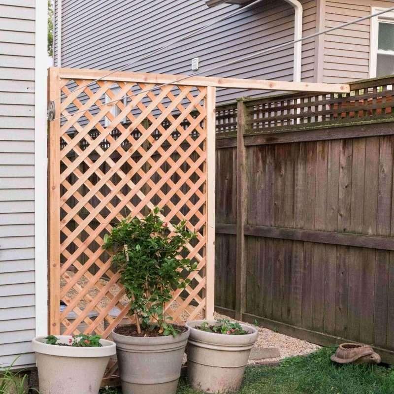 A lattice privacy screen in a side yard