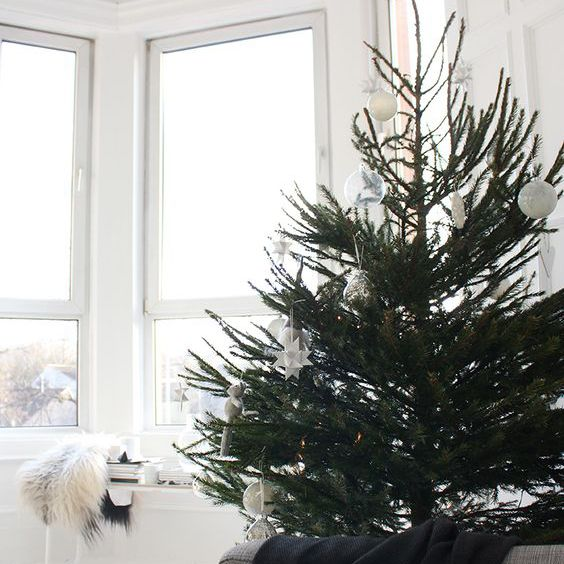 Christmas tree in a white room