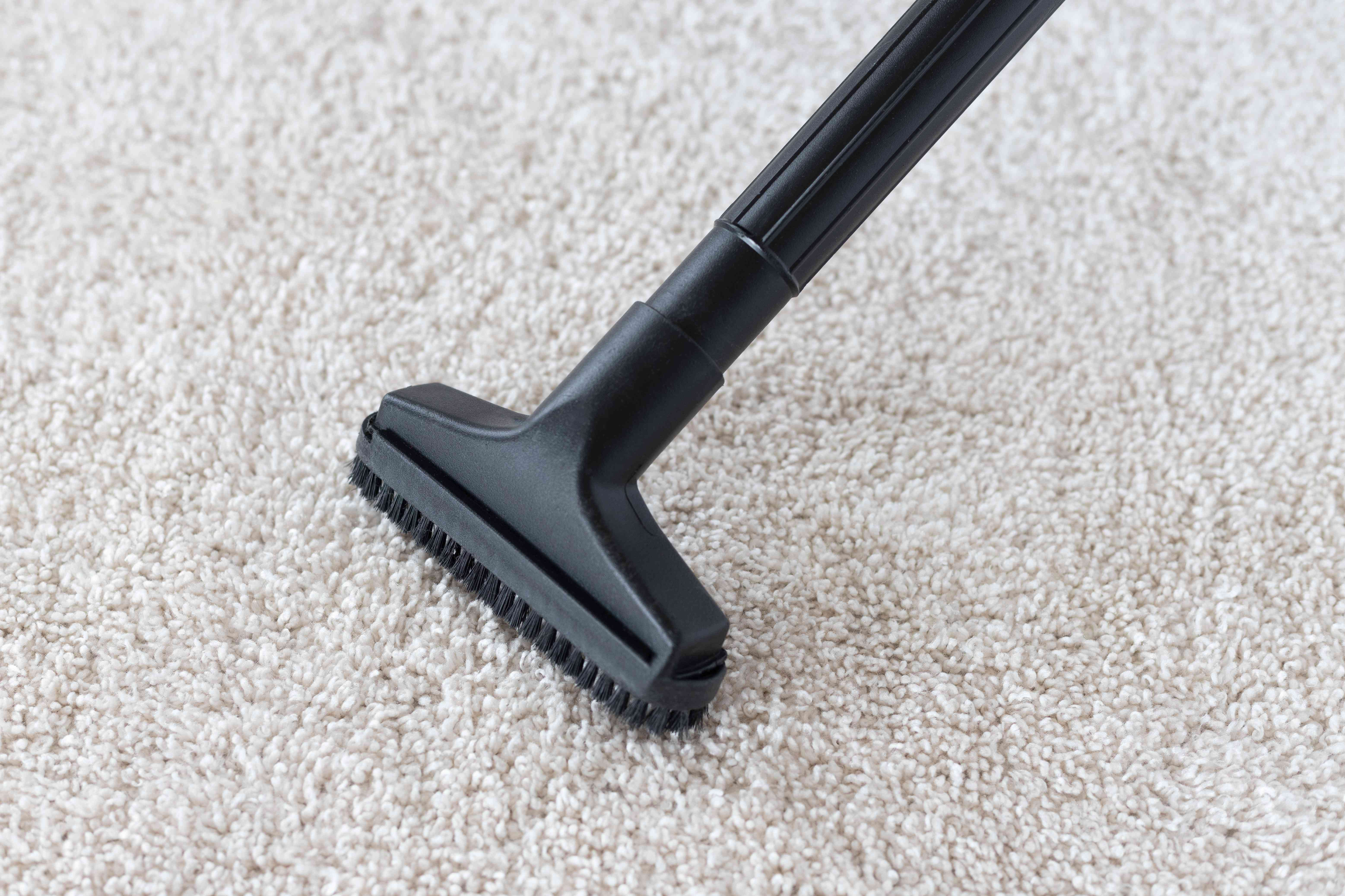 Cleaned carpet with vacuum to remove dry