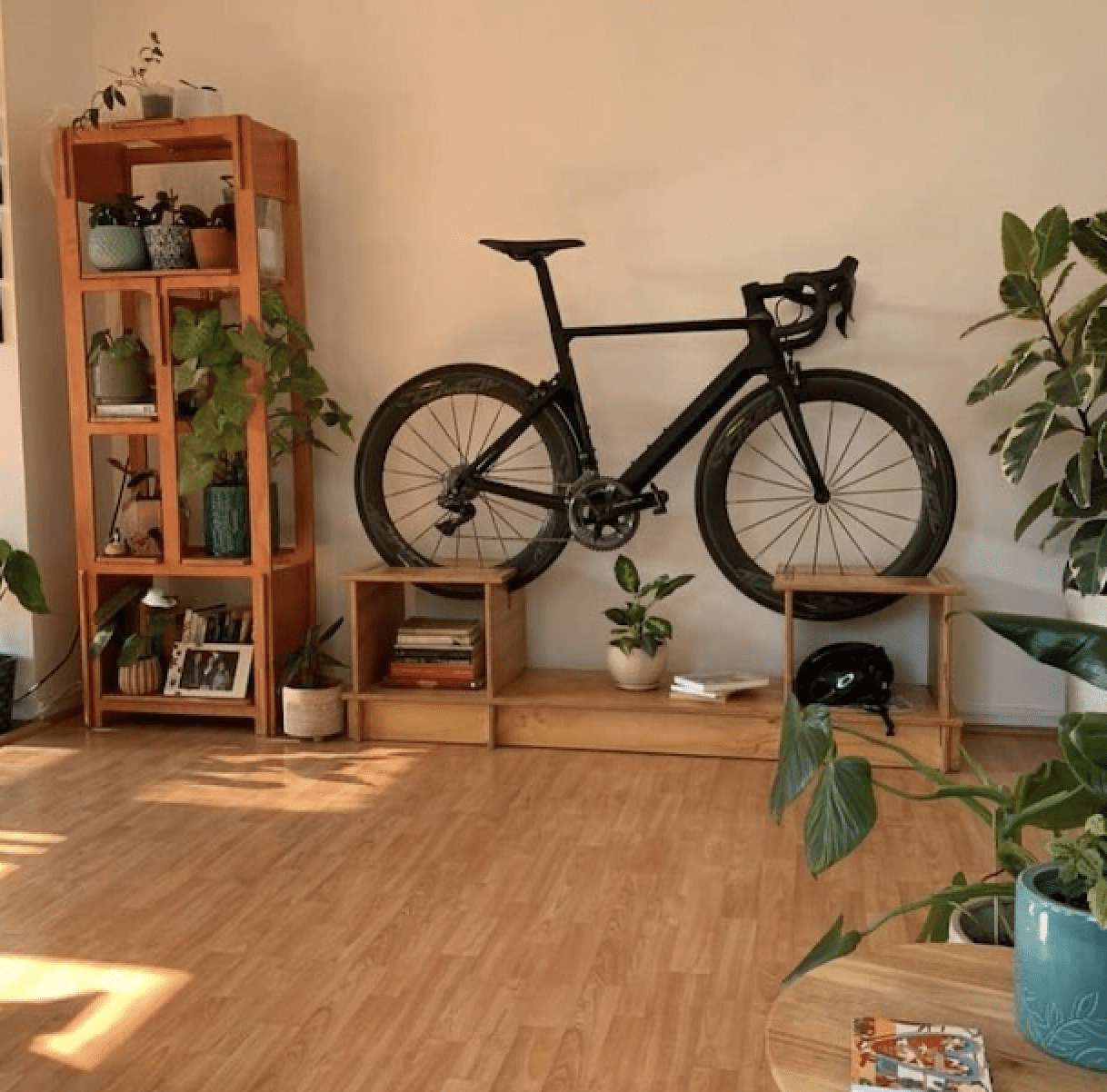a low shelf with built in spot for bike