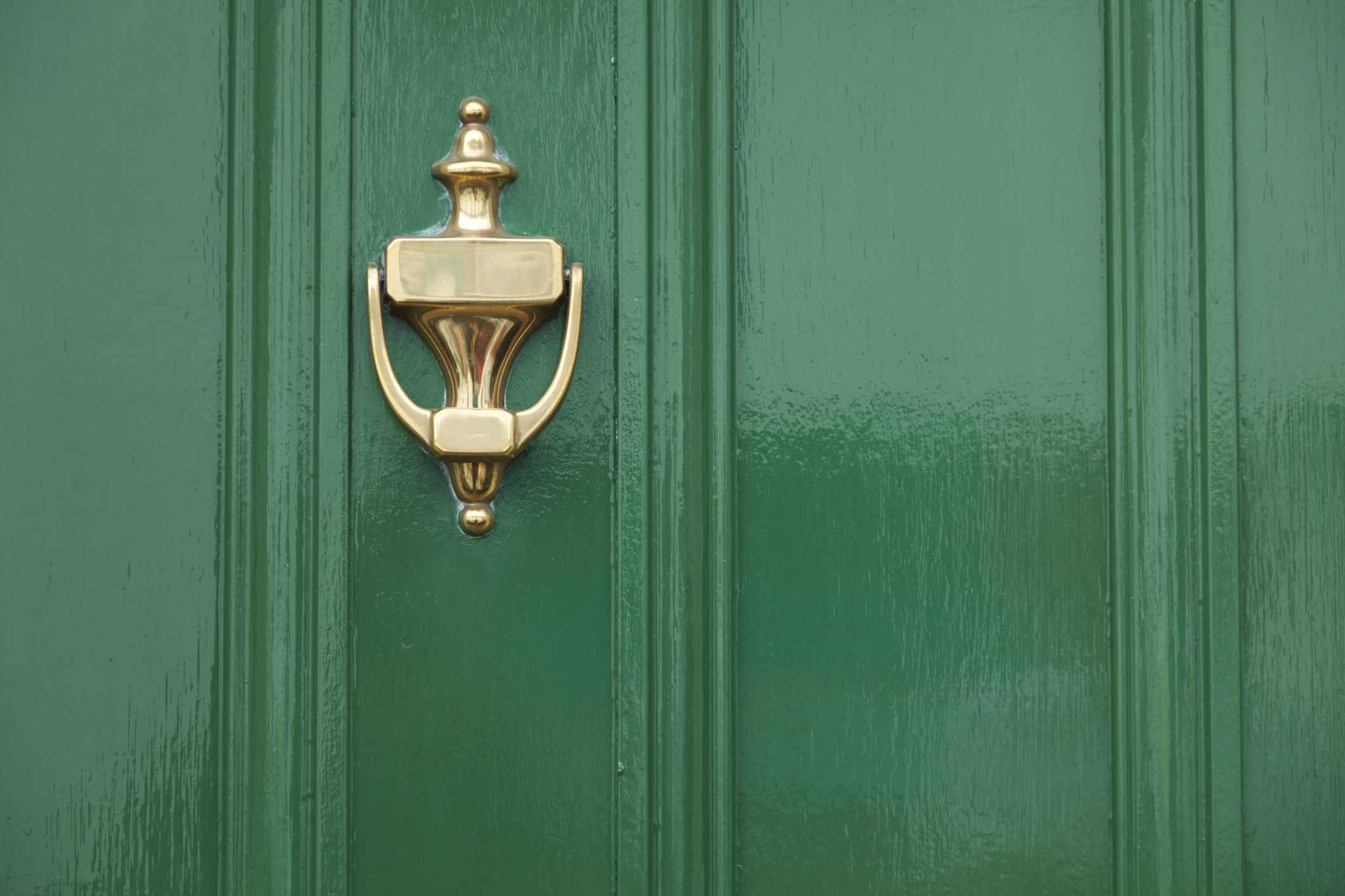 Close up view of green door with brass knocker.