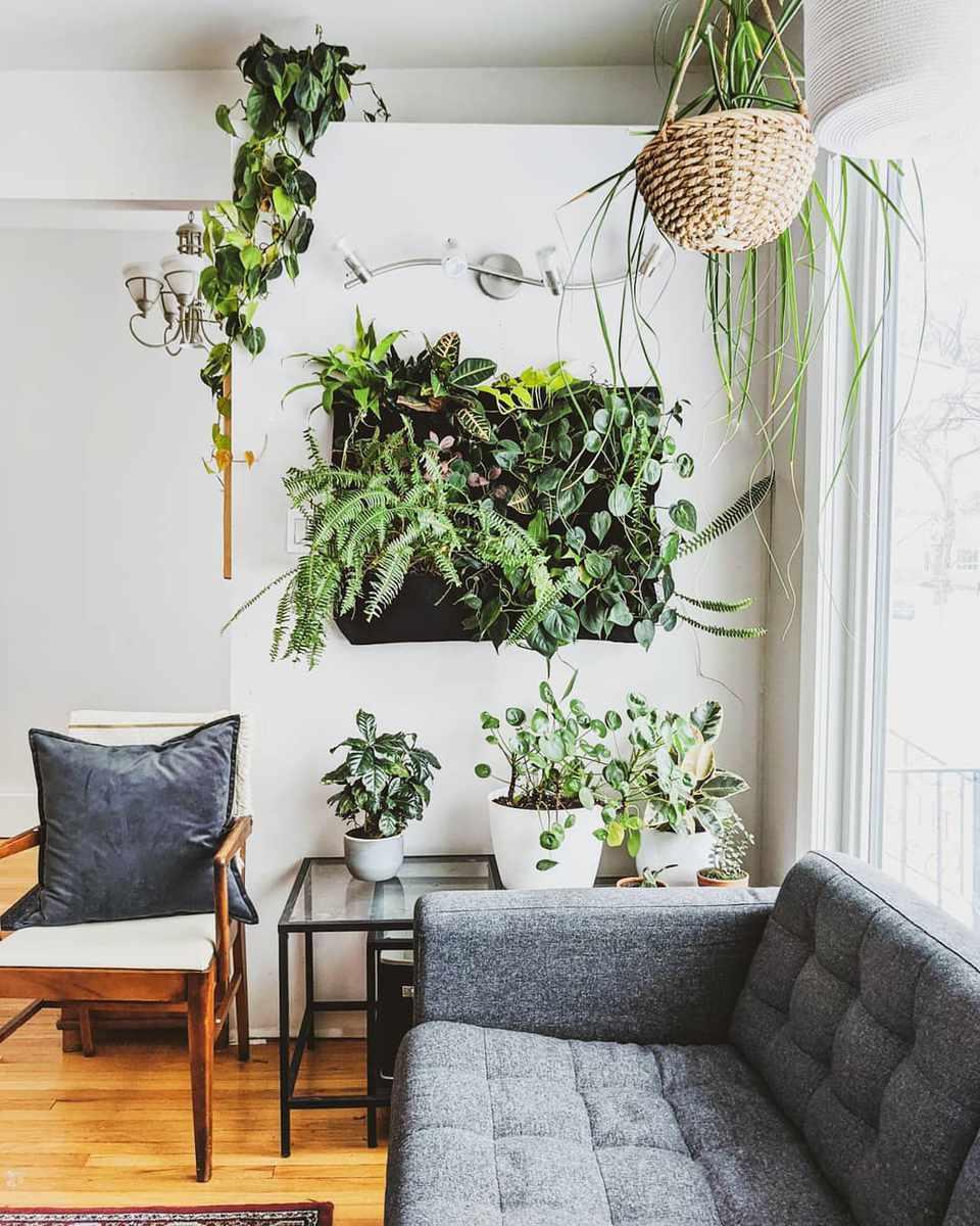Sala de estar con muchas plantas
