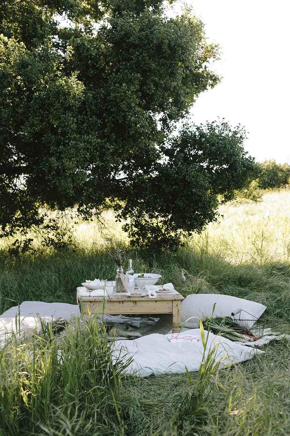 picnic setup with pillows as seats