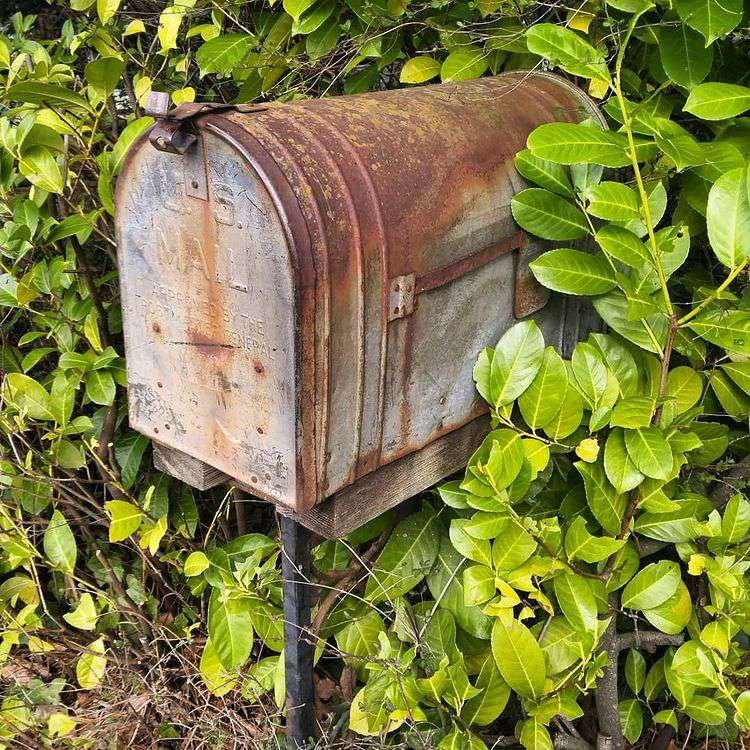 Repurpose an old mailbox