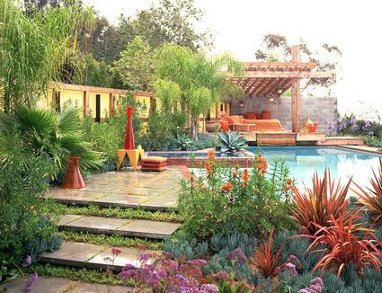18 Best Plants For Swimming Pool Landscaping