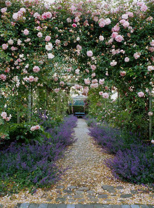 Pérgola de rosas trepadoras