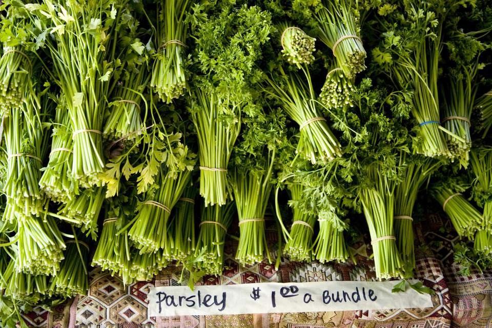 Organic parsley at a farmer's market