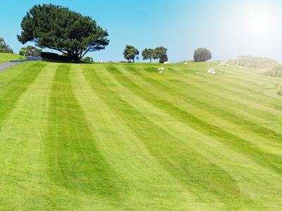 Striped lawn in a public park