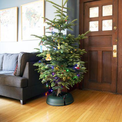 Exploring The Upside Down Christmas Tree Phenomenon
