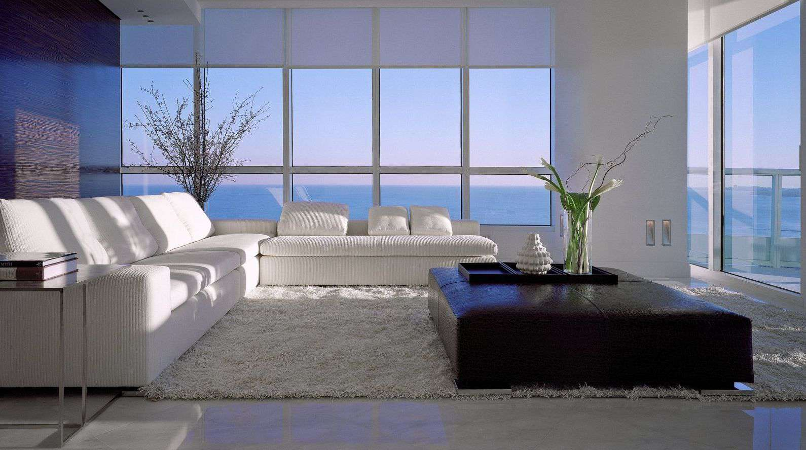 Sidelights casting light into a living room with floor-to-ceiling windows, white couches, and brown ottoman.