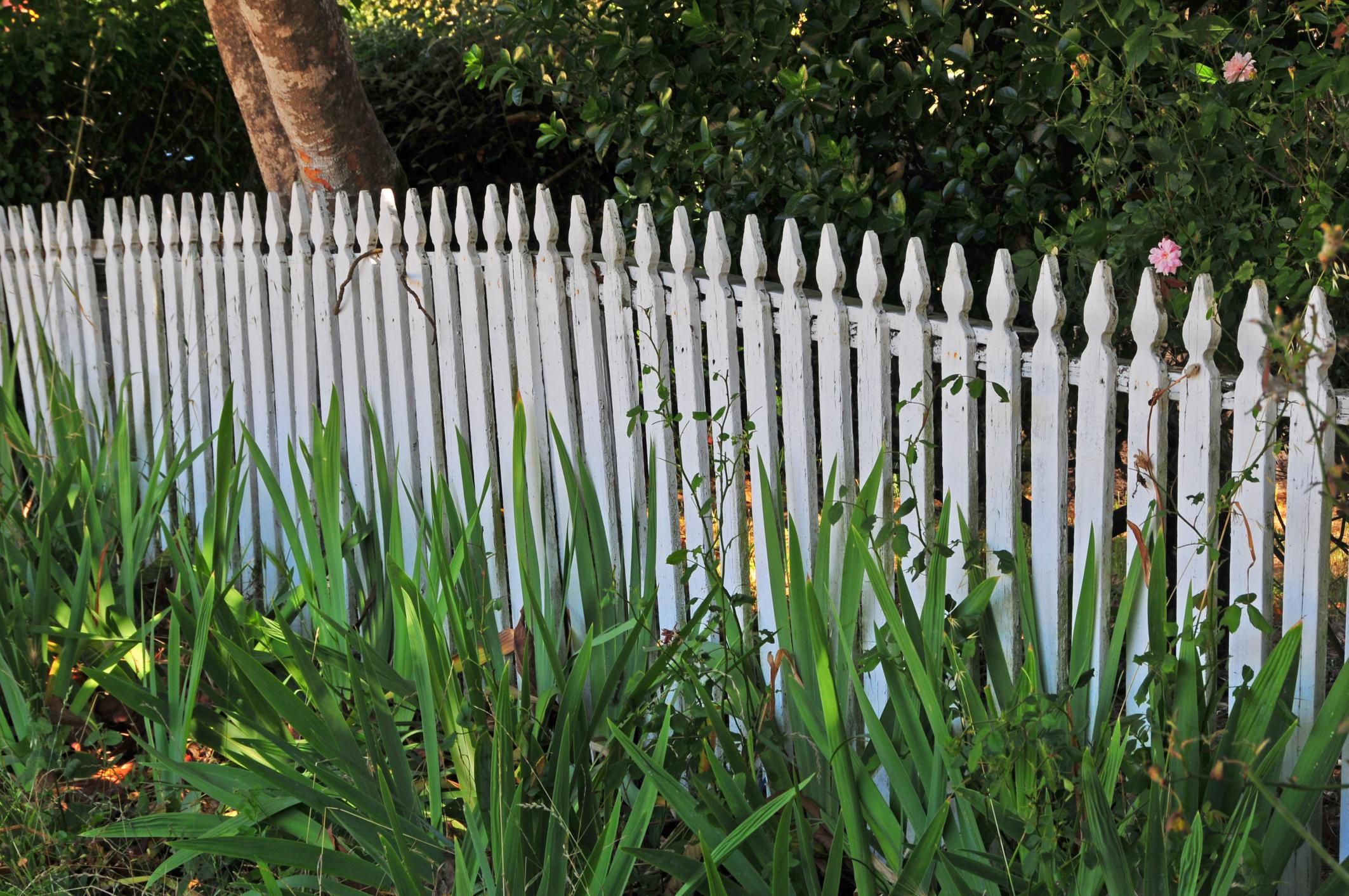Fence Building Permits