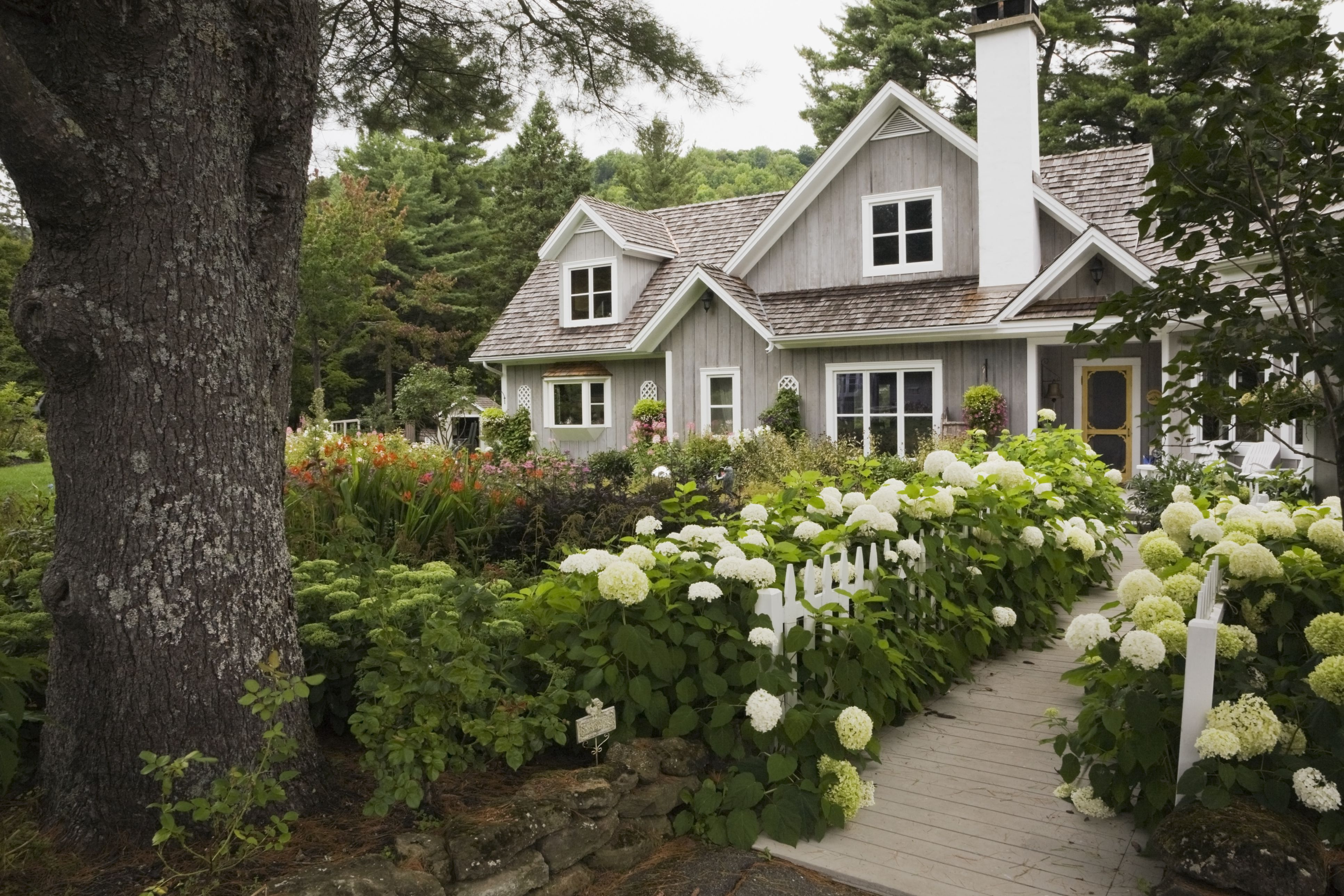 house with beautiful front garden