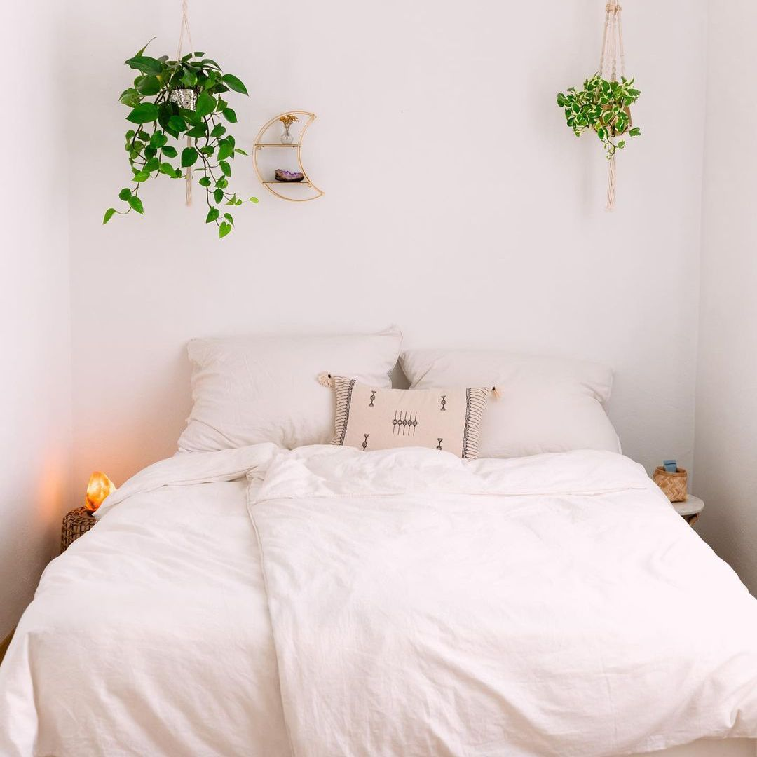 aesthetic room with plants hanging up
