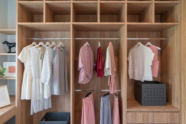 Modern Wood Closet