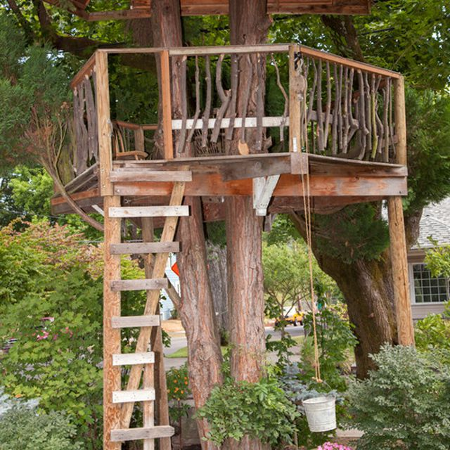 Rustic, natural wood tree house