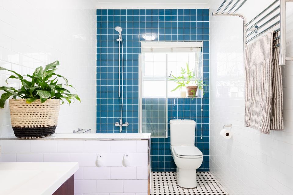 Blue wall tiled bathroom with houseplants and brightly-lit window