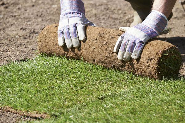 Close Up Of Landscape Gardener Laying Turf For New Lawn