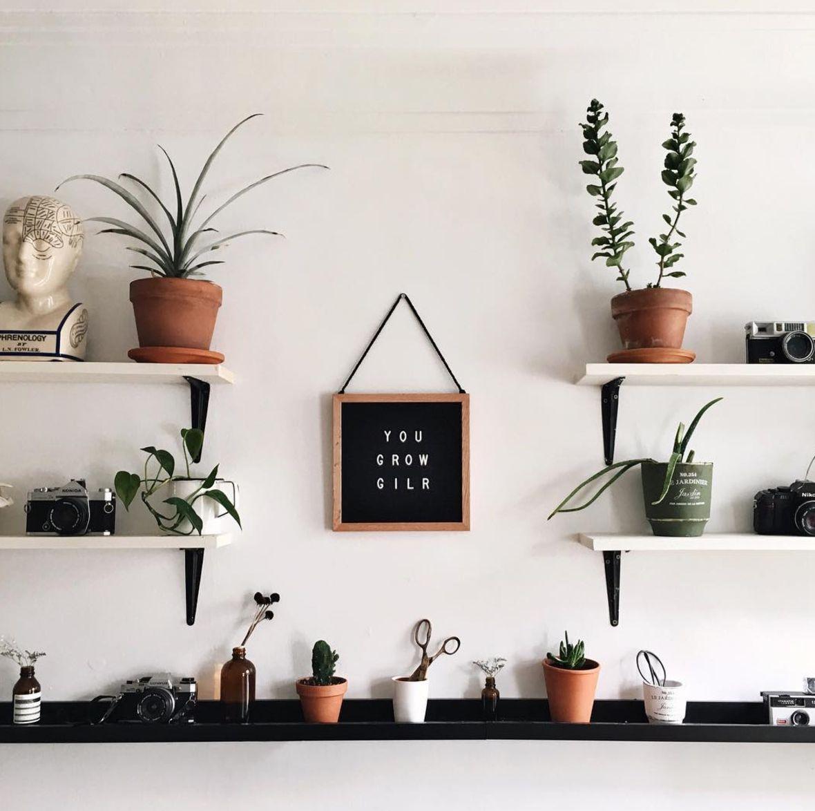 plantas y un tablero de letras que dice creces chica