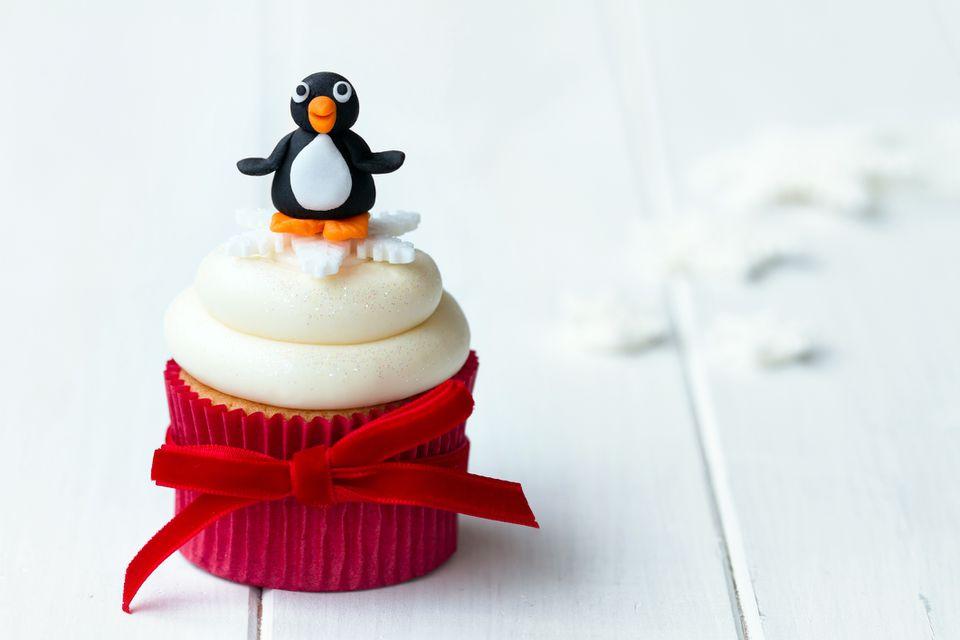 magdalena pingüino