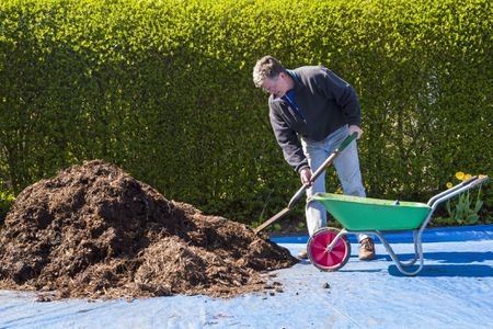 What to Do With Old Mulch in Spring