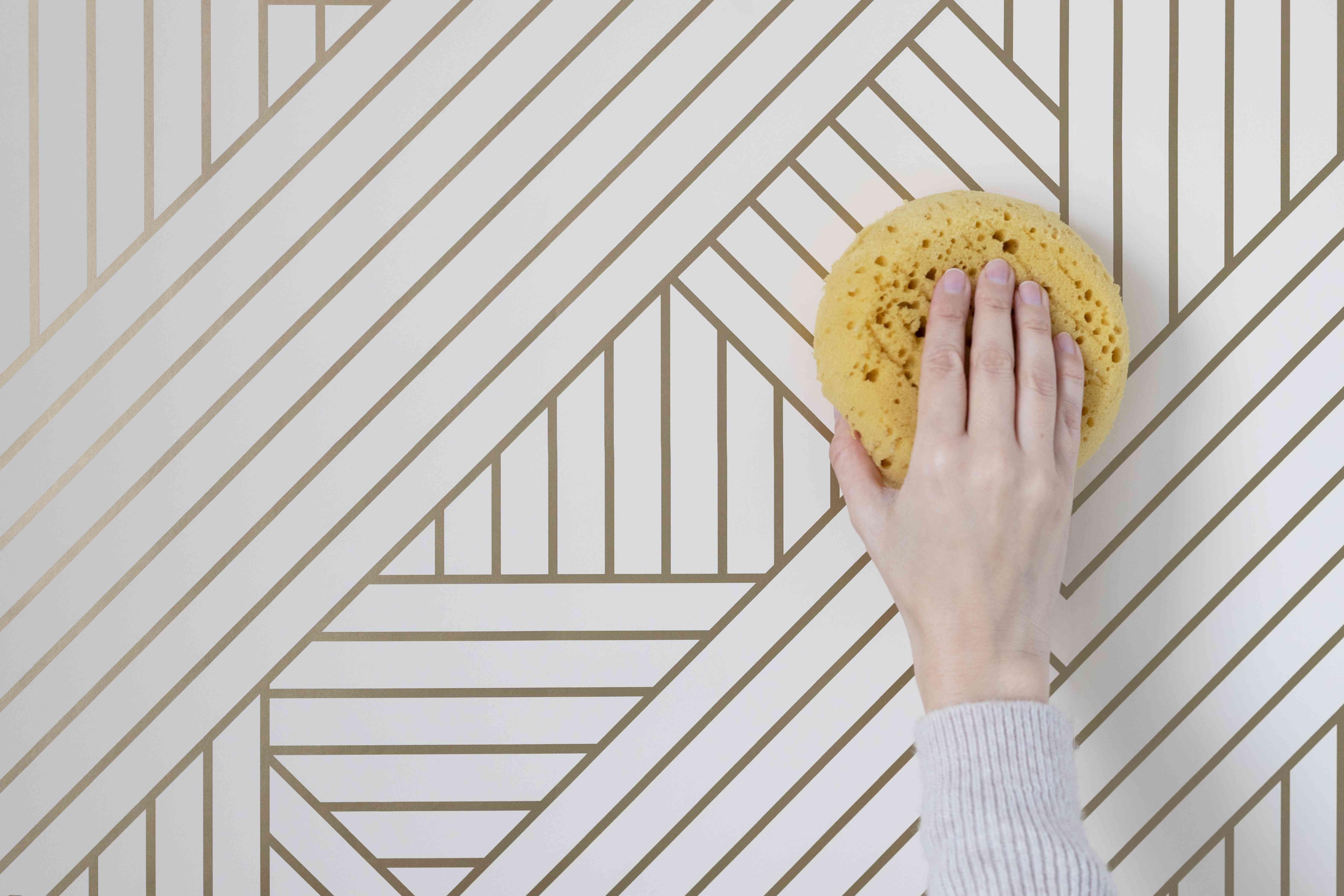 Soaked sponge wiping down white and gold striped wallpaper