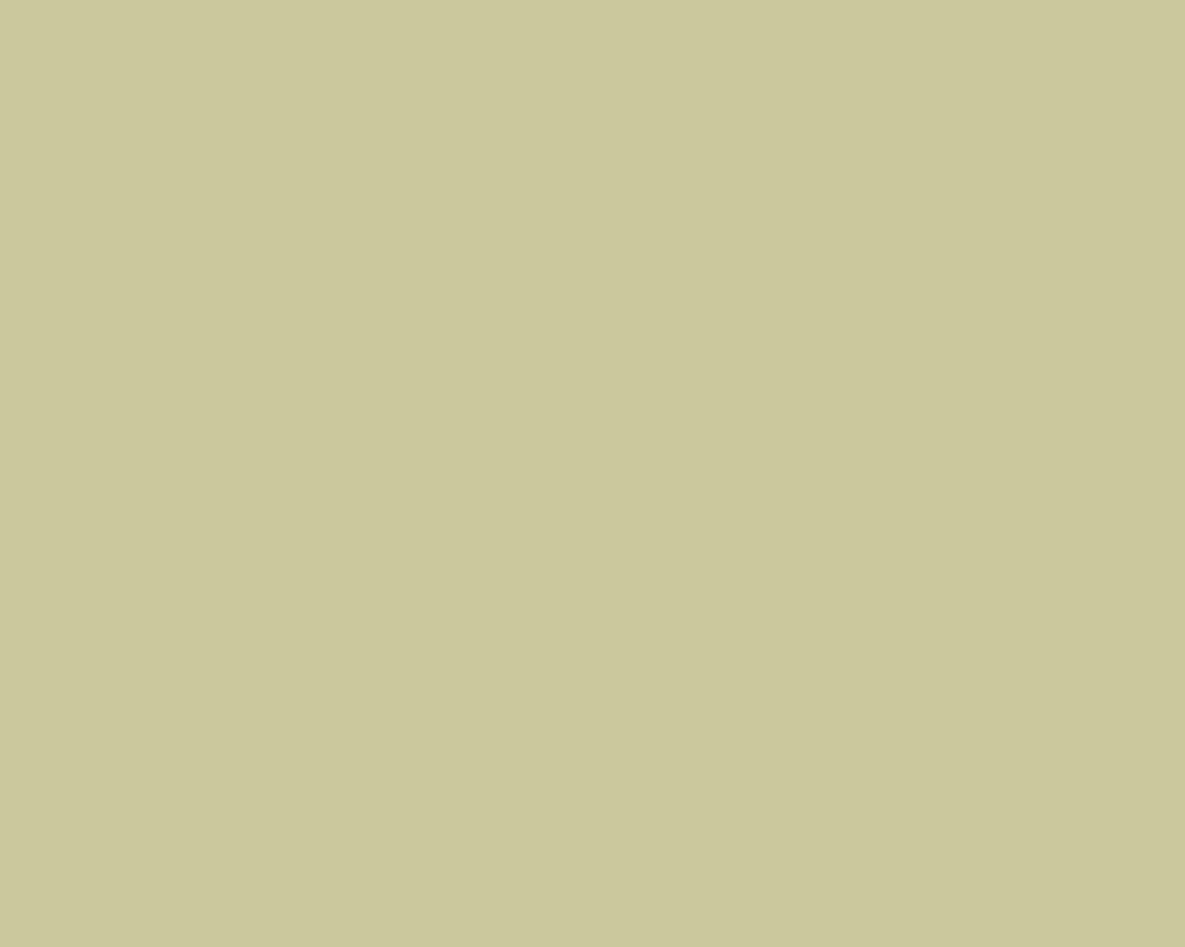 Shagreen SW 6422