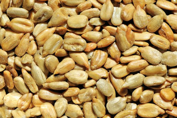No-Waste Hulled Sunflower Seed