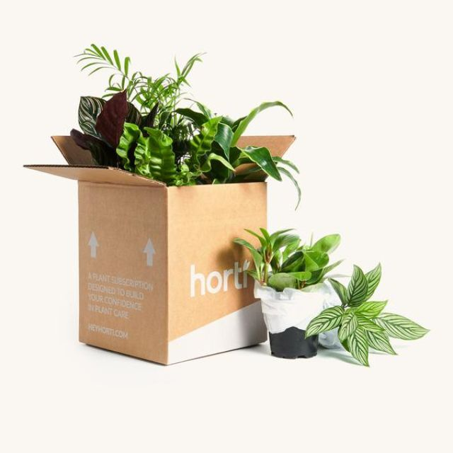 Horti