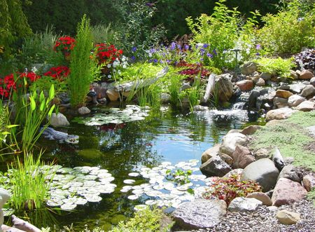 Pond With Waterfall Design