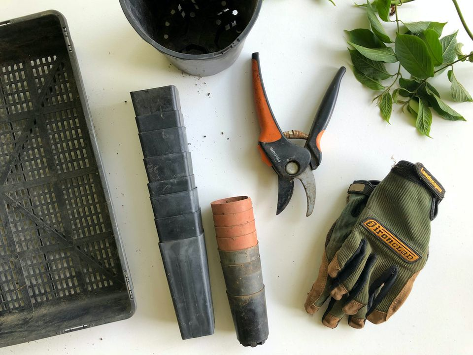 Gardening tools on white surface