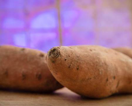 Learn How Easy It Is to Grow Sweet Potato Vines