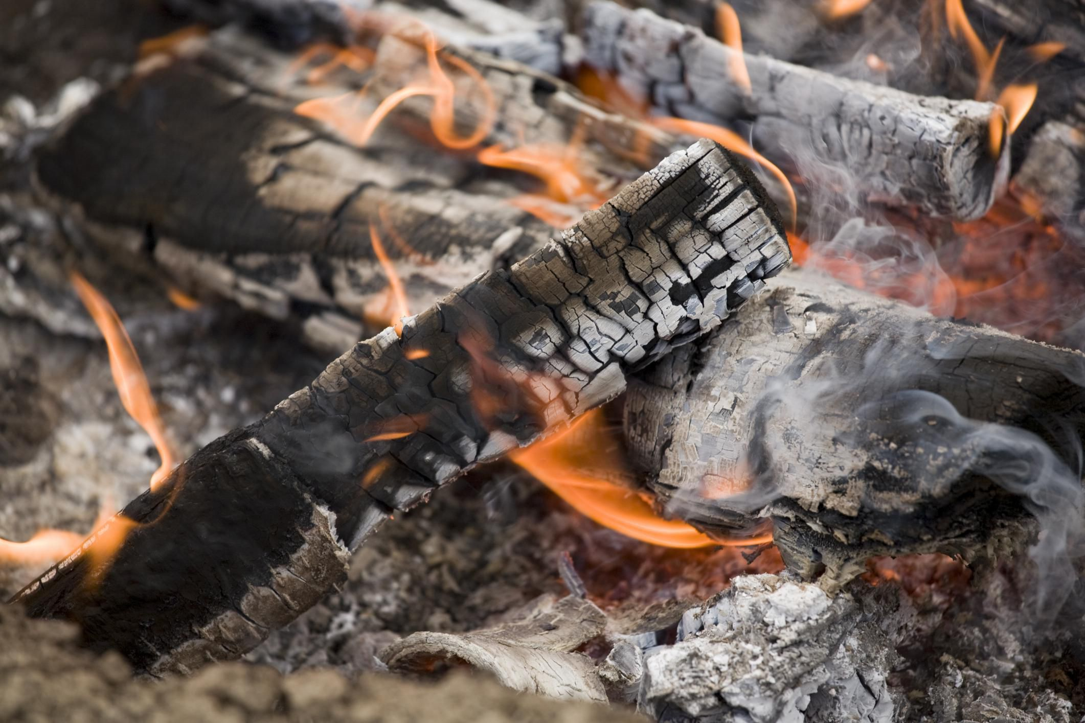 Should You Use Wood Ash in the Garden?