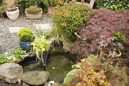 Ping For Small Water Features Garden Pond And Fountain Supply