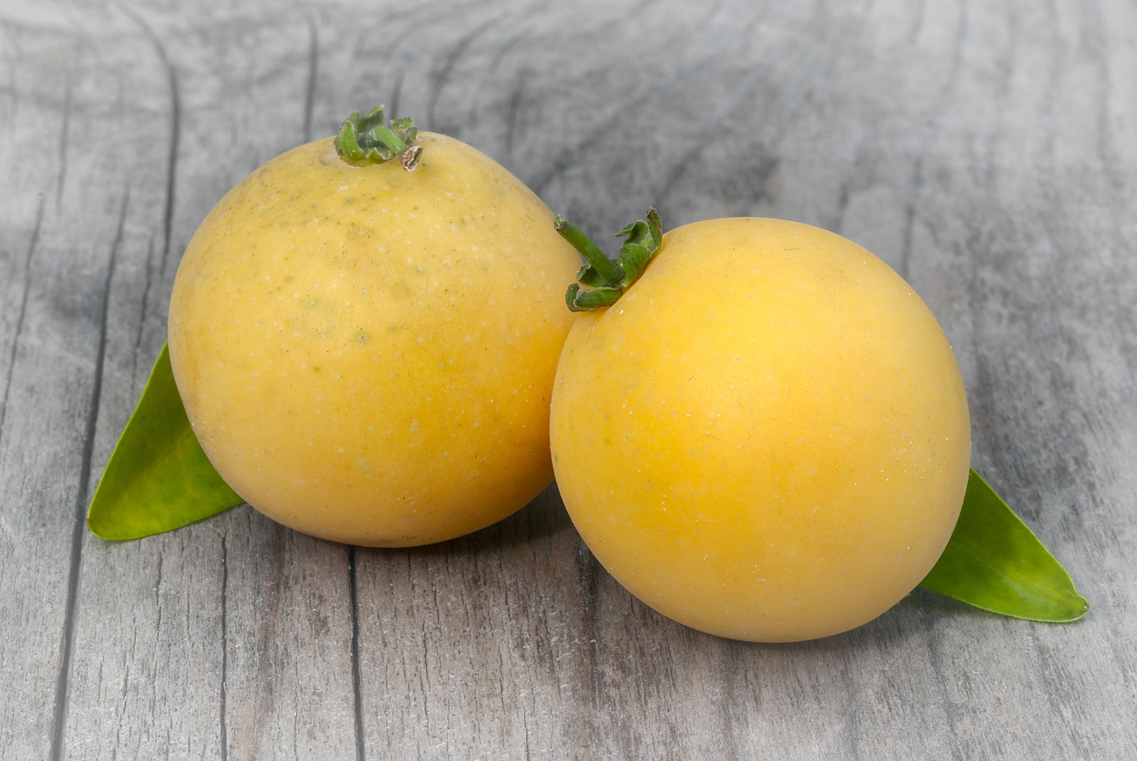 Kei apple (Dovyalis caffra), umkokola. tropical fruit