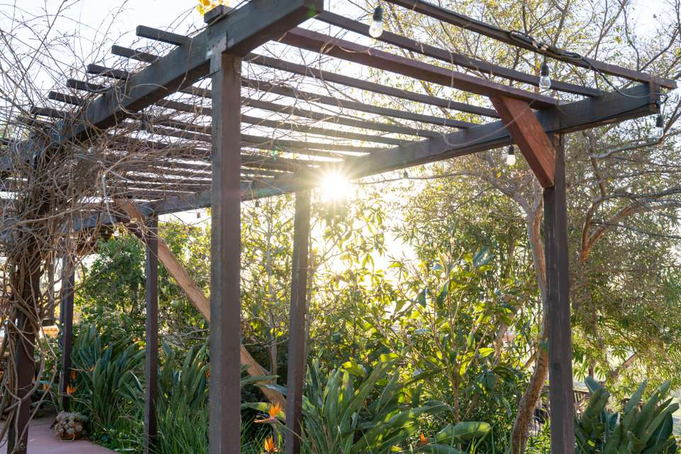 Wooden pergola in front of sun and foliage
