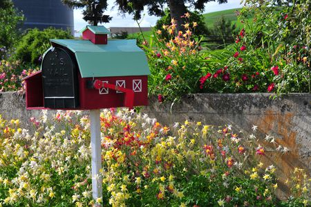 Ideas For Planting Around A Mailbox Scheme Dominated By Annuals