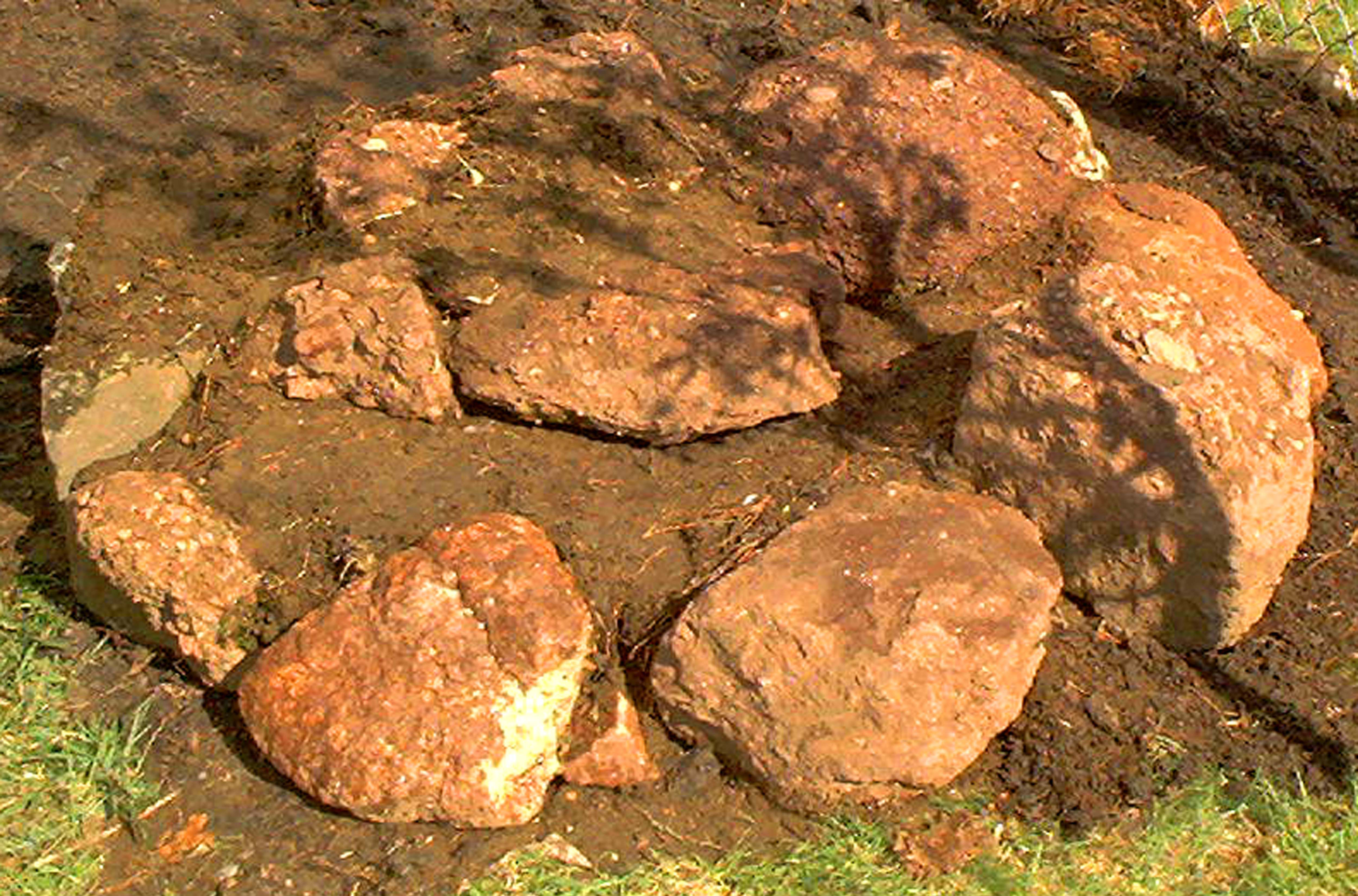 How to Build Rock Gardens: Photo Tutorial