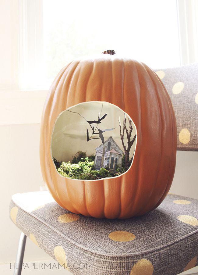 A pumpkin made into a terrarium