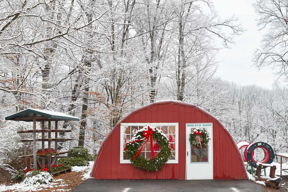 coronas de navidad colgadas fuera de una tienda de regalos