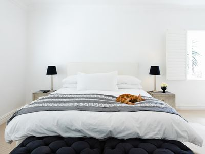 Minimal bedroom with white painted walls with brown cat laying down in middle of bed