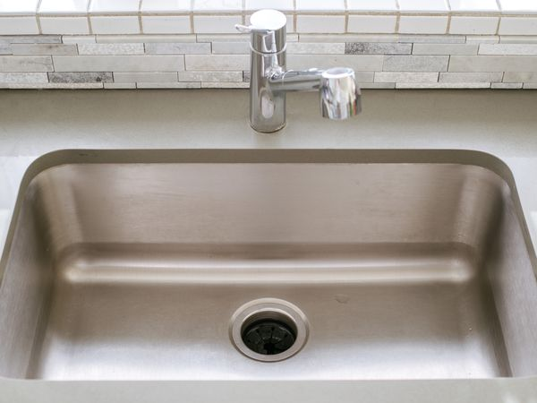 Sink with exposed garbage disposal