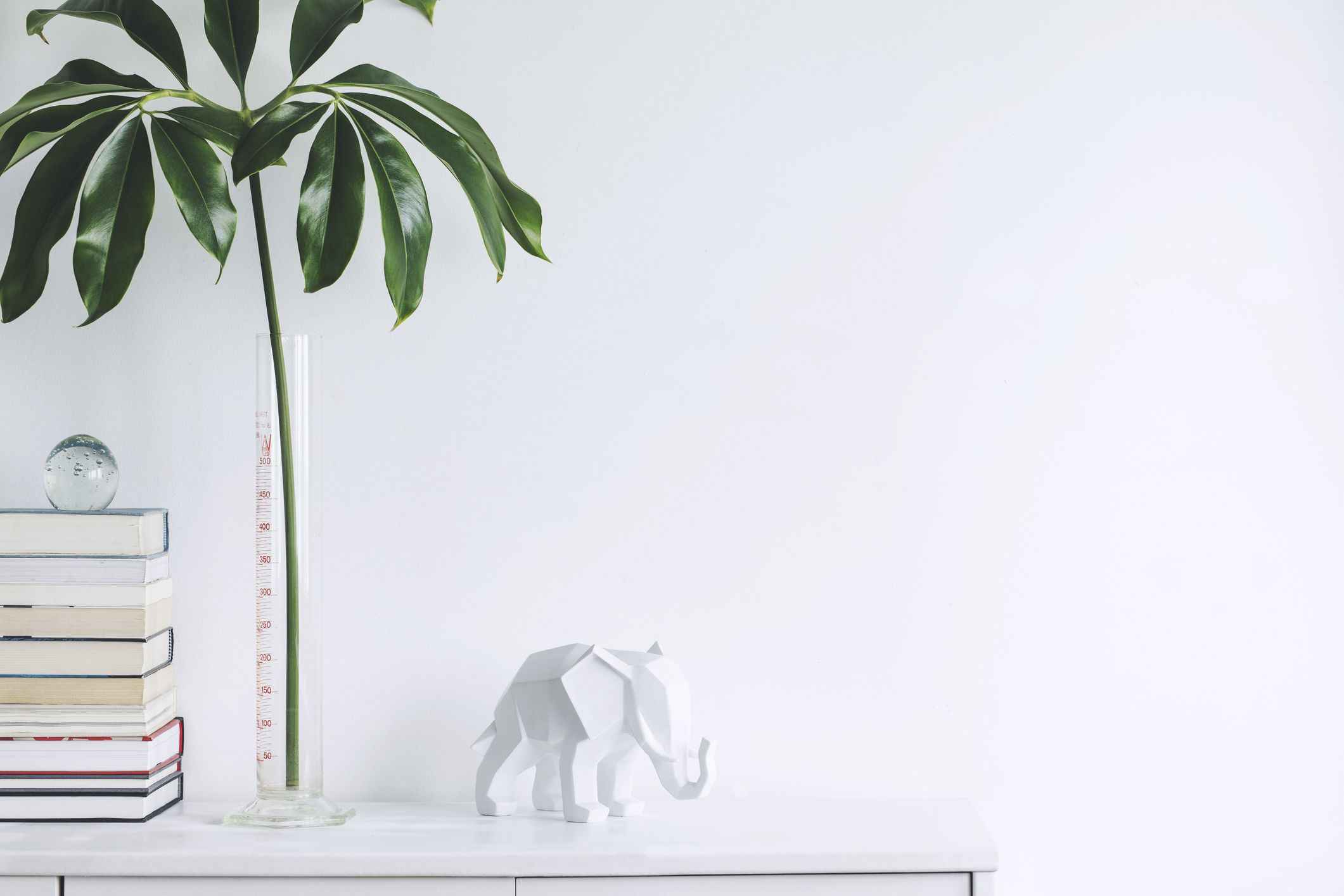 The white stylish interior with copy space, tropical leafs, white elephant figure and books on the shelf. Modern composition of white space