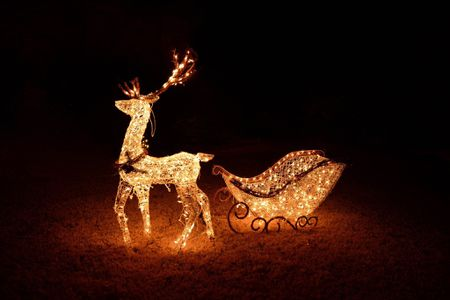 reindeer pulling sleigh both lighted as a christmas display