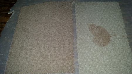 Comparing Smartstrand Triexta And Polyester Carpet