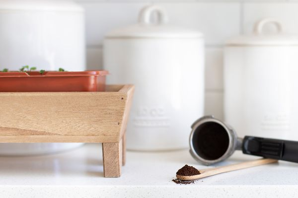 coffee grounds next to a planter