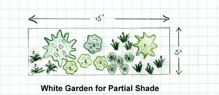 Create a white shade garden with these 8 plants garden design plan for a white themed shade garden mightylinksfo
