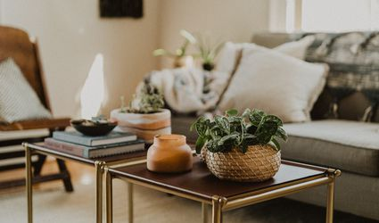 earthy colors in a cozy living room with plants
