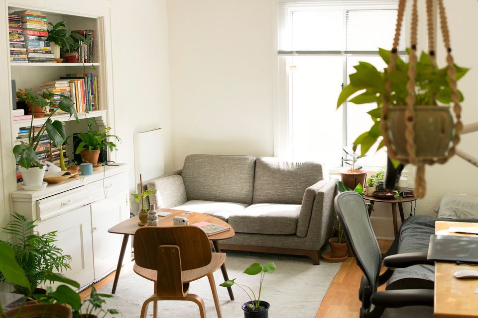 clean apartment with plants