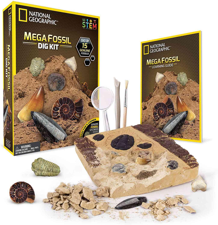 National Geographic Mega Fossil Dig Kit